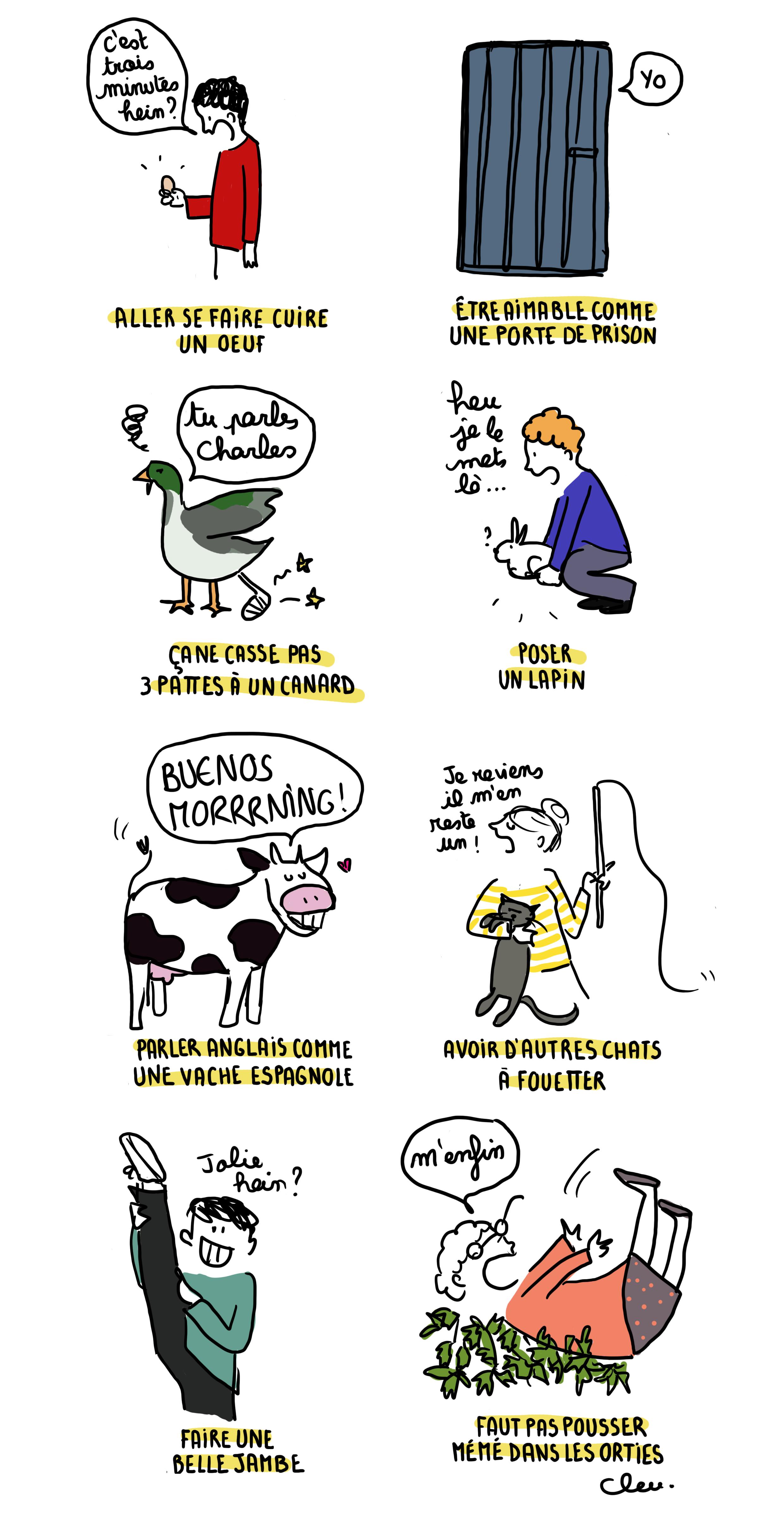 8 expressions françaises imagées… et illustrées